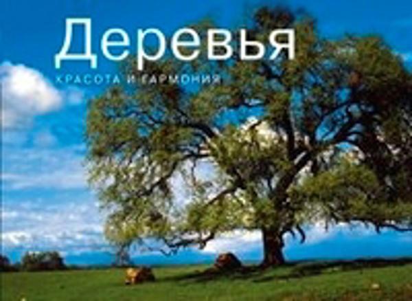 Изображение Деревья. Красота и гармония. Фотоальбом