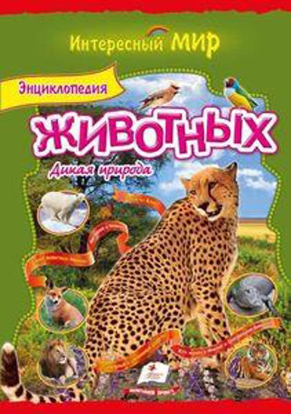 Изображение Энциклопедия животных. Дикая природа (мелованная бумага)