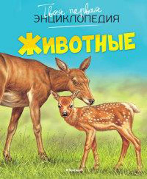 Изображение Животные