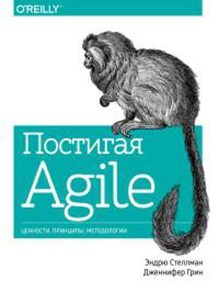 Изображение Постигая Agile. Ценности, принципы, методологии