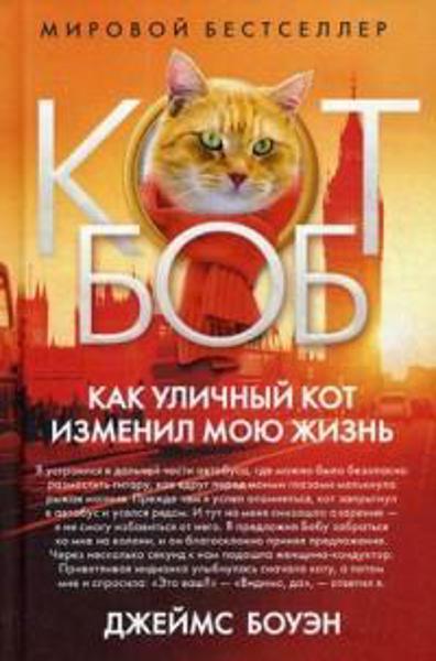 Зображення Как уличный кот изменил мою жизнь